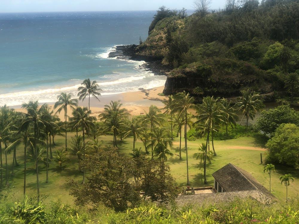 Kauai National Tropical Botanical Gardens by Robin Gotfrid
