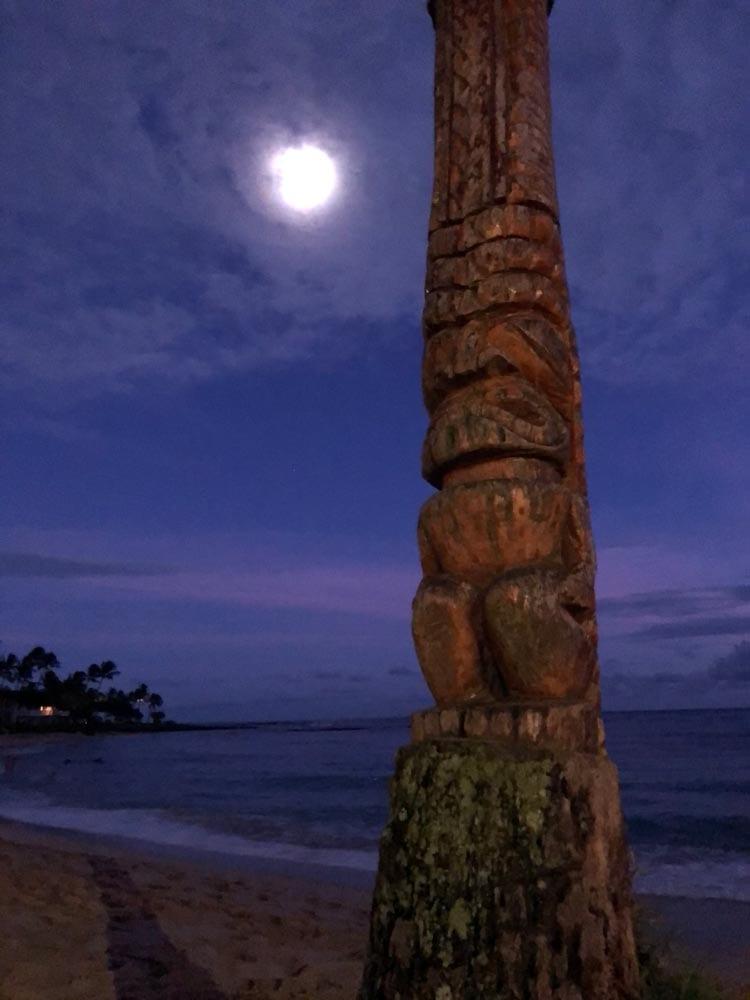 Hawaiian carved coconut tree at Sheraton Poipu Beach